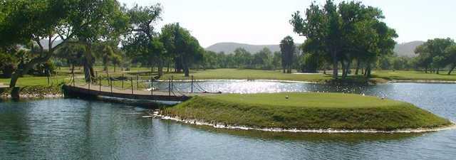 Cottonwood at Rancho San Diego - Ivanhoe