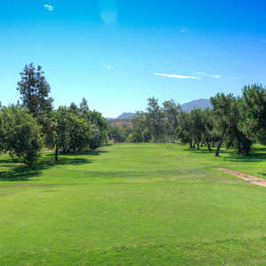 Pine Glen at Sycuan Resort: #10