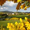 A view of a fairway at The Bridges Golf Club.