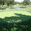 A view of green with water coming into play (courtesy of Butte Creek Country Club)