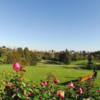 A view from tee with roses in foreground (courtesy of Bel-Air Country Club)