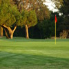 A sunny view of a green at Sunnyvale Golf Course (Marty Wayne)