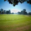 A view of a green at El Prado Golf Courses