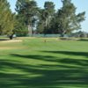 A view of the 8th fairway at Pajaro Valley Golf Club
