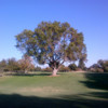A view from Dryden Park Golf Course
