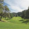 A view of a tee at Meadowood Resort Hotel
