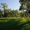 A view of a green at Sherwood Forest Golf Course