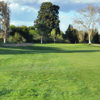 A view from a fairway at Alister Mackenzie from Haggin Oaks Golf Course