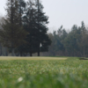 A view of a green at Jack Tone Golf
