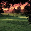 A view of the 8th hole at Sunset Hills Country Club.