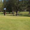 A view of the 5th hole at Twain Harte Golf Club.