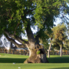 A view of a tee at Visalia Country Club.
