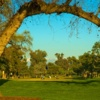 A sunny day view from Visalia Country Club.