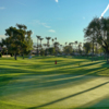 A view of a green at Desert Horizons Country Club.