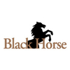 Black Horse at Bayonet/Black Horse Golf Course - Public Logo