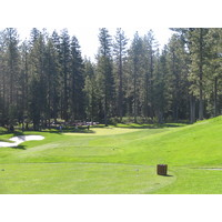 Golfers can feel small amongst all the nature at Coyote Moon Golf Course.