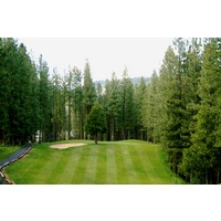 Plumas Pines Golf Resort's par-3 15th hole has a large tree in front of the green.
