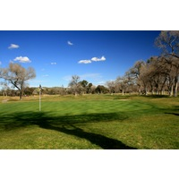 Carlton Oaks Lodge & Country Club has a stretch of holes that play through cottonwood trees.