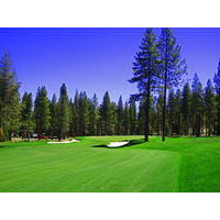 A couple of tall pine trees help guard the entry to the green on the par-4 12th at Martis Camp golf course in Truckee, California.