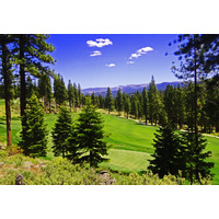 "At 314 yards from the ""Medal"" tee, Martis Camp's 16th hole is a drivable par 4."