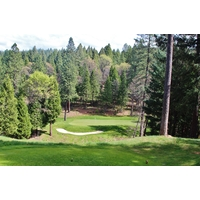 The 154-yard second hole at Apple Mountain Golf Resort plays at least a club shorter because of the elevation drop.