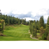 After a dramatic downhill tee shot, the ninth hole at Apple Mountain Golf Resort climbs back up to an elevated green.