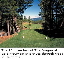 The Dragon at Gold Mountain