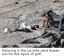 La Jolla Sunbathers