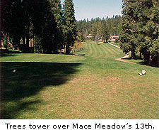 Mace Meadows Golf & Country Club