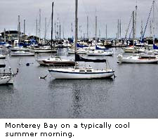 Monterey Bay in summer