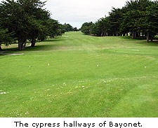 The cypress hallways of Bayonet