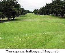The cypress hallways of Bayonet